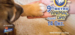 9th METRO Animal Day